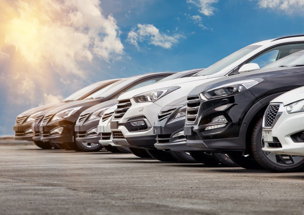 Fleet of cars available for renting